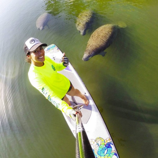 manatee selfie stand up paddleboard leesea78