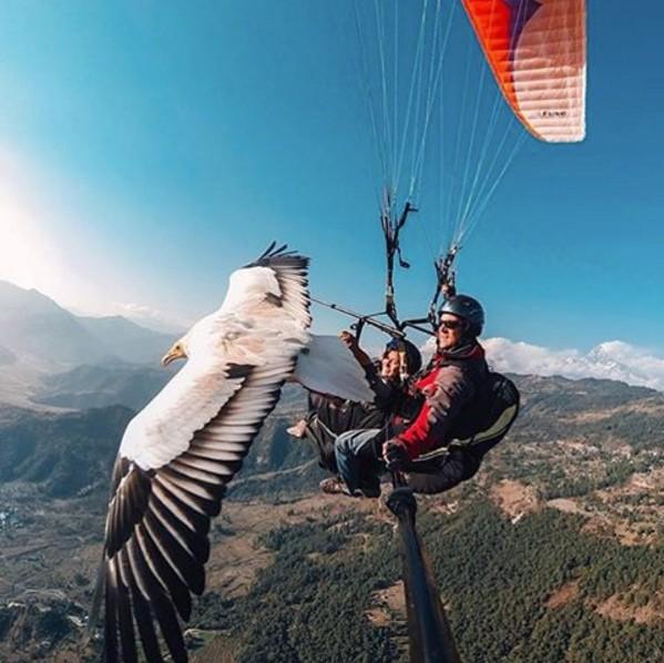 parasailing condor gopro selfie saturday sokt
