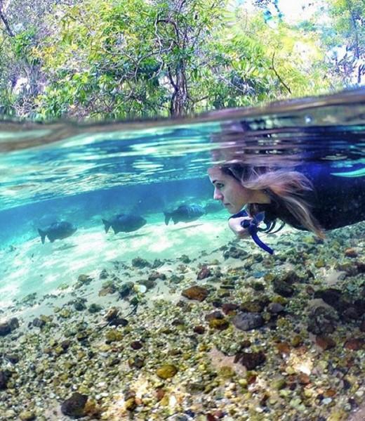 spring diving kellynpereira gopro