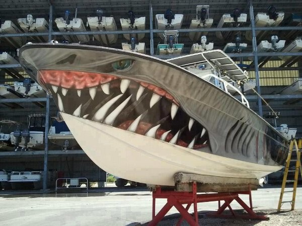 shark painted boat