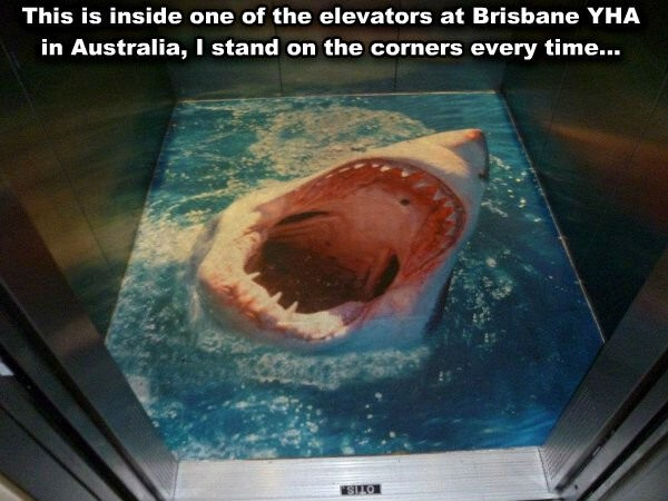 huge shark on the bottom of the elevator