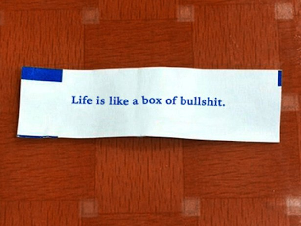 Life is like a box of bullshit fortune cookie